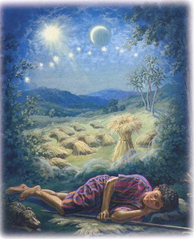 What Happens When We Sleep and Do Dreams Really Matter Joseph